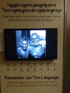 Tiwi Museum